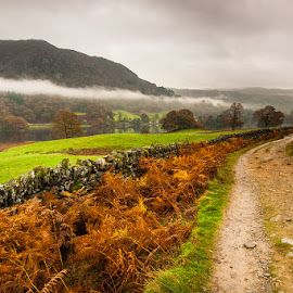Rydal Water by Tomasz Woźniak - Landscapes Mountains & Hills ( tomasz woźniak, raagoon, water, hills, cumbria, autumn, lake, anglia, lake district )
