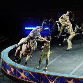 Circus Lady Horse Riders by Stephen Beatty - News & Events Entertainment