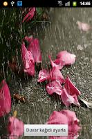 Screenshot of Yağmur Canlı Duvar Kağıdı