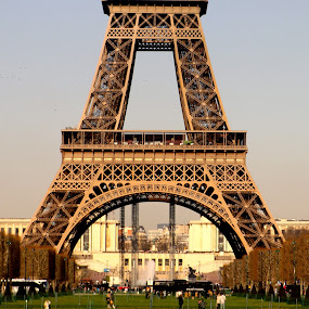 Eiffel Tower by Sarah Brouckaert - Buildings & Architecture Statues & Monuments