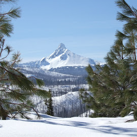 Jefferson by Connie Hoyt Tompkins - Landscapes Mountains & Hills