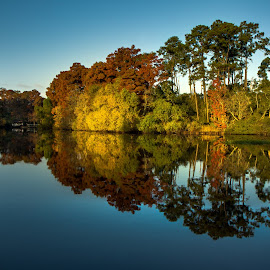 Morning Reflections by Carl Greer - Landscapes Waterscapes ( water, water scape, reflections, trees, land scape )
