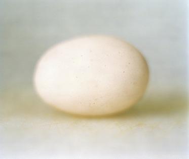 9_details_egg