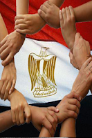 Screenshot of دستور مصر 2013
