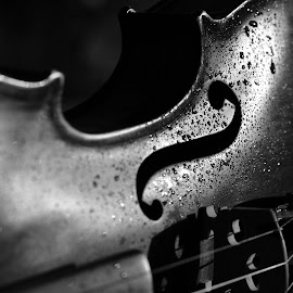 Violin... by Felipe Lima - Artistic Objects Musical Instruments ( water drops, musical instrument, violin, black and white, drops )