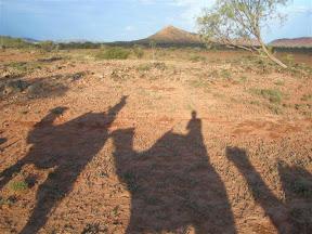 kameel rijden in australie