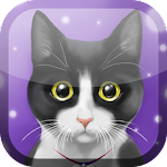 Cute Kitty Live Wallpaper 1.1 Apk