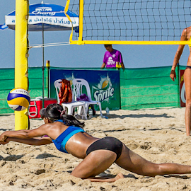 by Dmitri Molido - Sports & Fitness Other Sports ( beach volleyball, samila beach volleyball )