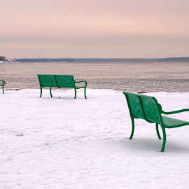 Cold Front by Alan Roseman - Artistic Objects Furniture ( cars in snow, february, new england, rhode island, snow, narragansett bay, lawn chairs,  )
