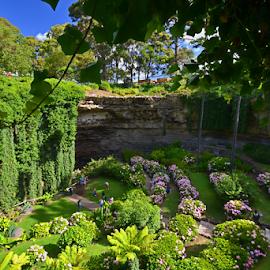 Below The Ground Garden by Kamila Romanowska - Landscapes Travel ( south australia, sinkhole, green, beautiful, australia, south, garden, sink hole )
