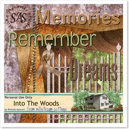 brendamascari_intothewoods_