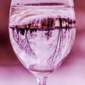 Reflection .... by Rajeev Krishnan - Artistic Objects Still Life ( reflection, still life, glass, reflections, reflect,  )