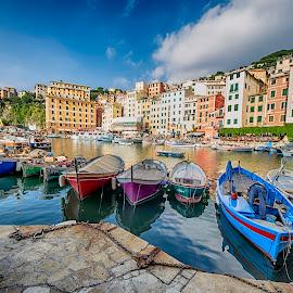 Camogli Harbour by Alessandro Scacchetti - Transportation Boats