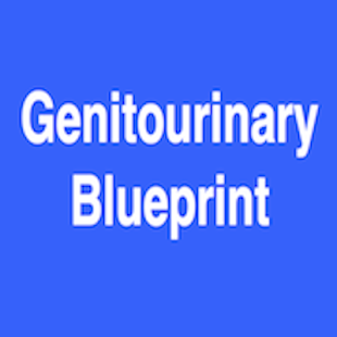 Genitourinary Blueprint PANCE - screenshot
