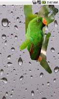 Screenshot of Screen Water Drops