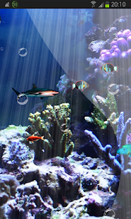 Reef Fish Crazy Tank HD - screenshot