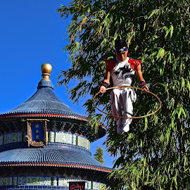 Chinese Acrobat by Steven Aicinena - People Musicians & Entertainers ( chinese acrobat )