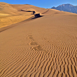 Great Sand Dunes National Park by Hunter Ten Broeck - Landscapes Deserts ( dunes, sangre de cristo mountains, great sand dunes national park, colorado, alamosa )