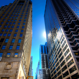 Chicago Skyscrapers by Sean Price - Buildings & Architecture Office Buildings & Hotels ( hdr, skyscraper, wide angle, perspective, chicago )