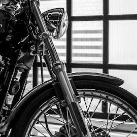 harley in B&W by Nicky Staskowiak - Transportation Motorcycles ( harley davidson, black and white, beautiful, chrome, belgium,  )