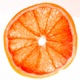slice of grapefruit  by Debra Parrilli - Food & Drink Fruits & Vegetables ( fruit, juicy, slice of grapefruit, grapefruit,  )