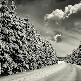 Winter forest road by Per-Ola Kämpe - Black & White Landscapes (  )