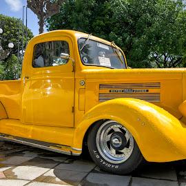 Old Car Exposition by Aldemir Vieira - Transportation Automobiles ( carros antigos, salvador, campo grande,  )