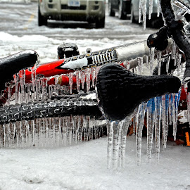 Ice Storm 2013 by Claire Bear - Transportation Bicycles ( extreme, winter, composition, weather, beauty )