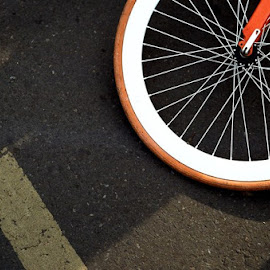 Wheel by Antok Riyanto - Transportation Bicycles ( fall, color, colorful, nature )