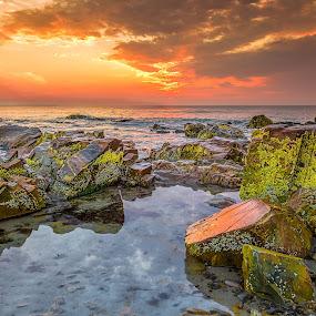 by Ed & Cindy Esposito - Landscapes Sunsets & Sunrises ( ocean, beach, sunrise )