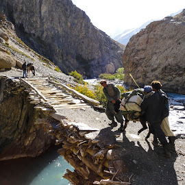 Stubborn Donkey by Christopher Hallam - Landscapes Travel ( wakhan, badakhshan, afghanistan, donkey, bridge, river )