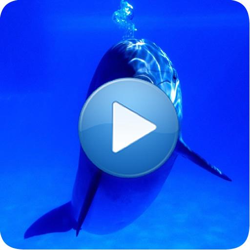 海豚 - 放鬆的聲音 音樂 App LOGO-硬是要APP