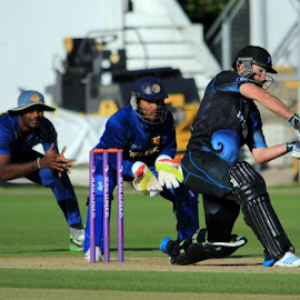 New Zealand batsman by John Davies - Sports & Fitness Cricket ( new zealand 'a', john davies, cricket, swalec stadium, sri lanka 'a', cardiff )