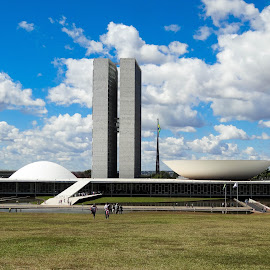 The National Congress of Brasil by Tomek Karasek - Buildings & Architecture Public & Historical ( parliament, congress, niemeyer, national congress of brasil, brasilia, design )