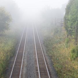 Foggy Raiway Tracks by Robert Machado - Transportation Railway Tracks ( visibility, railroad, railways, poor, transportation, foggy, railway, nature, fog, railroads, transport, weather, lines, misty, mist,  )