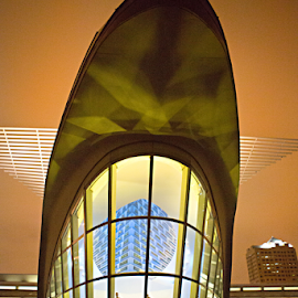 Milwaukee Art Museum by Tiona Anglin Appel - Buildings & Architecture Office Buildings & Hotels ( buildings, night, design, city )