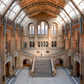 NHM by George Johnson - Buildings & Architecture Public & Historical ( george johnson photography, color image, fuzzypiggy, fuzzypig, george johnson, fuzzypig.com, fuzzypiggy photography, colour image )