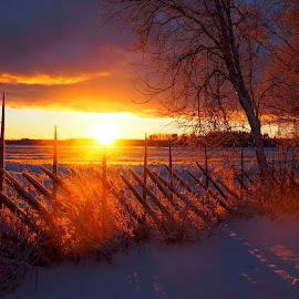 by Eija Nissinen - Landscapes Sunsets & Sunrises
