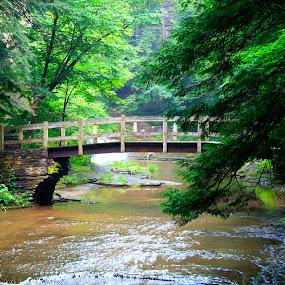 Robert Treman Bridge by Peter Andrusyszyn - Landscapes Waterscapes ( photo by pete andrusyszyn, robert treman state park ny )