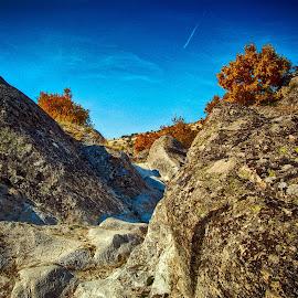 Kameni skalila by Katerina Mavrovska - Nature Up Close Rock & Stone
