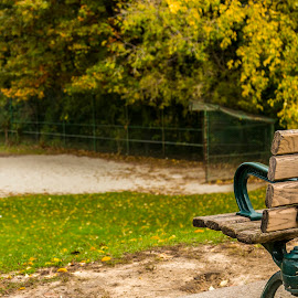 Baseball Memories by Rob Taylor - City,  Street & Park  City Parks ( remember, think, bench, park, relax, autumn, baseball, memories, quiet,  )