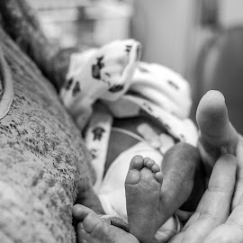 Preemie Prints by Bobbie Brewer-Moore - People Body Parts ( nicu, preemie,  )