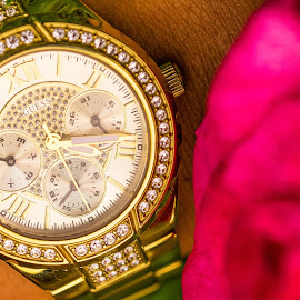 Fashion by Florin  Galan - Artistic Objects Clothing & Accessories ( hand, rose, fashion, clock, guess, stones )