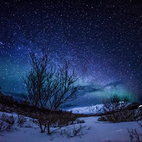 Amazing Night Sky by CK Lam - Landscapes Starscapes ( iceland, winter, reykjavik, stars, thingvellir national park, northern lights, aurora, þingvellir )