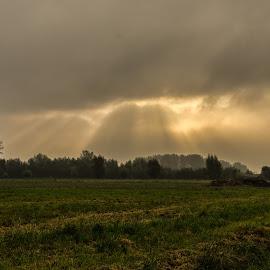 by Landogardner  Goma - Landscapes Prairies, Meadows & Fields