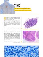 Screenshot of Atlas Interactivo Histología 2