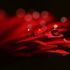 RED by Karthi Keyan - Abstract Water Drops & Splashes