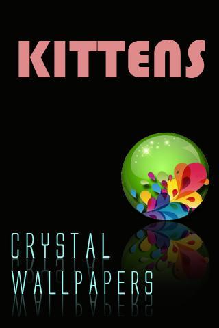 水晶小貓壁紙