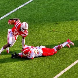 Western Kentucky Hilltoppers by Kenny Coots - Sports & Fitness American and Canadian football