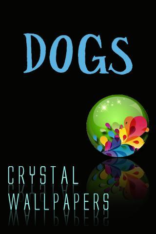 水晶狗壁紙